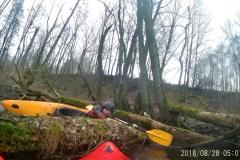 vlcsnap-2019-02-25-10h50m10s436